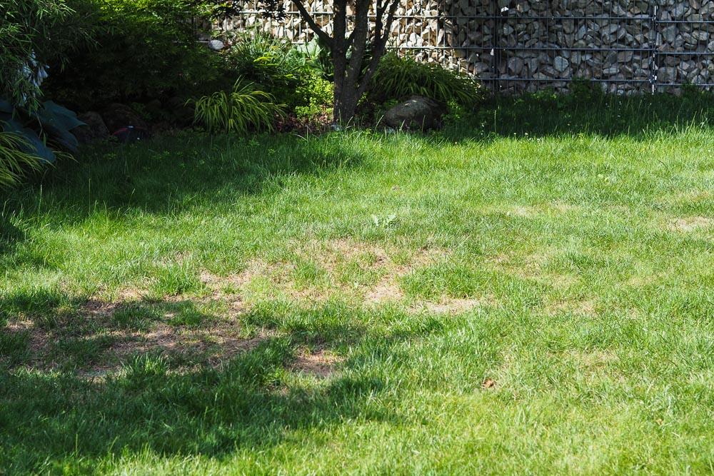 Organischer Dünger im Garten